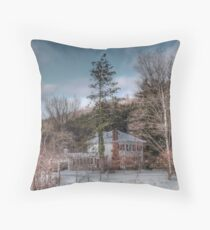 My Neighborhood Throw Pillow
