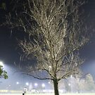 Foggy night 1 by mistarusson