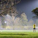 Foggy night 2 by mistarusson