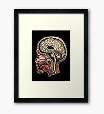 Sagittal head section Framed Print