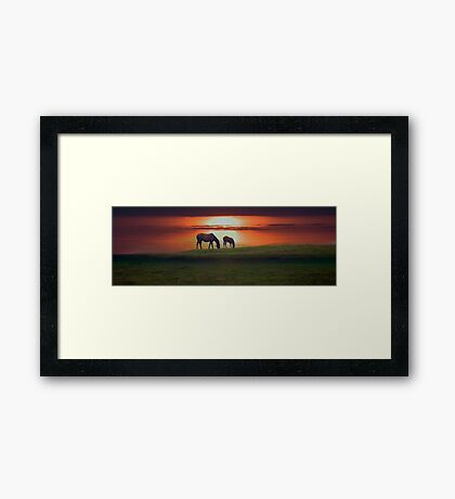 Sunset horses Framed Print