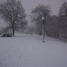 More snow.. Blizzard 2010 East Coast. by MollyHenage