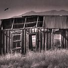 Old and Abandoned by Barbara Manis