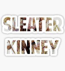 sleater kinney Sticker