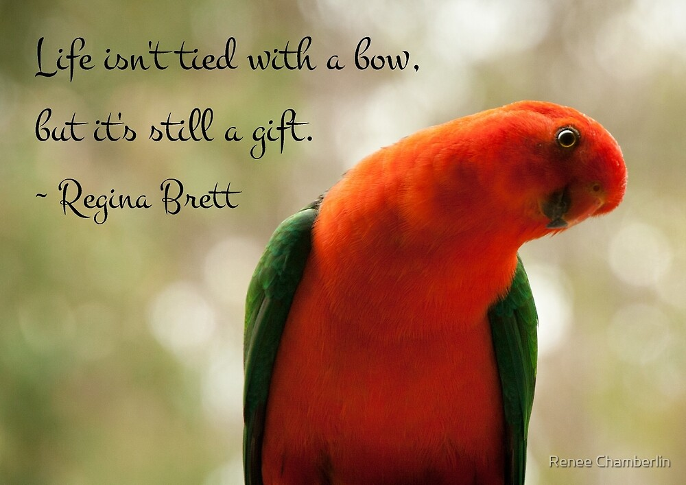 Life is a gift by Renee Chamberlin