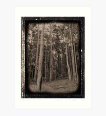 Simulated Daguerreotype Art Print