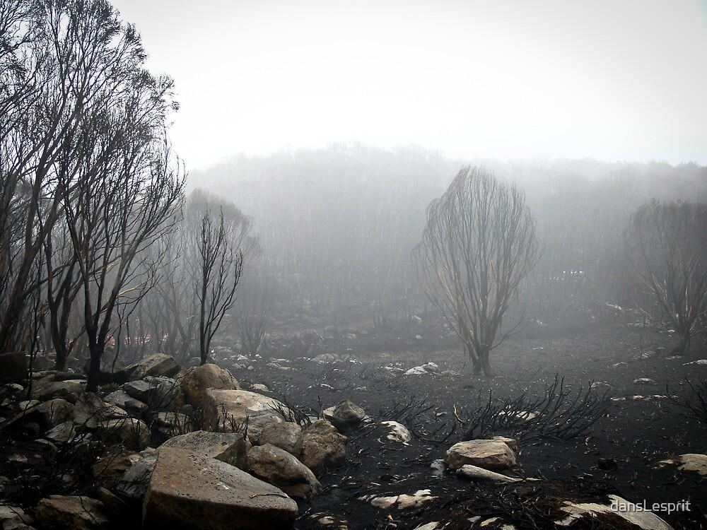 Disaster, Destruction, Desolation by dansLesprit