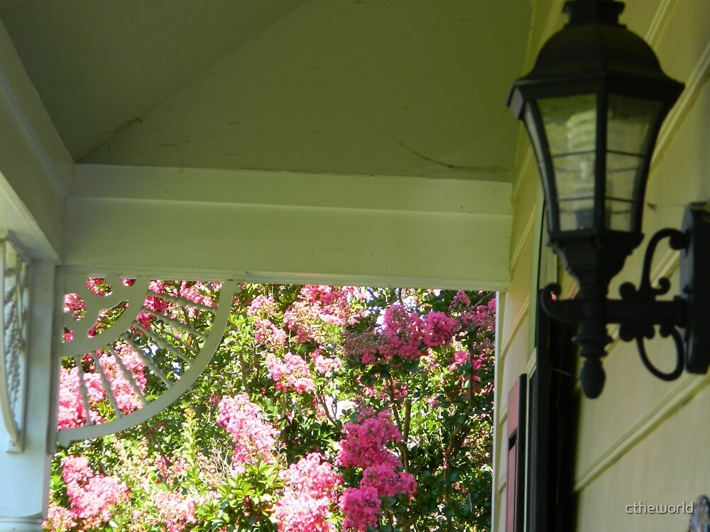 The Porch Light by ctheworld