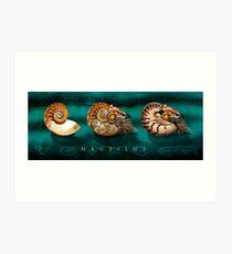 Nautilus Voyager Art Print