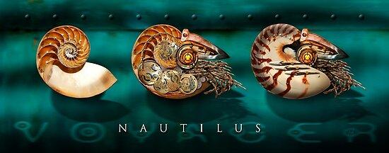 Nautilus Voyager by Ken Wright