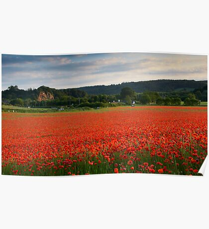 Bewdley Poppy Field Poster