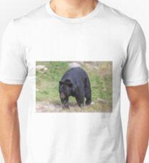 A large Black Bear Unisex T-Shirt