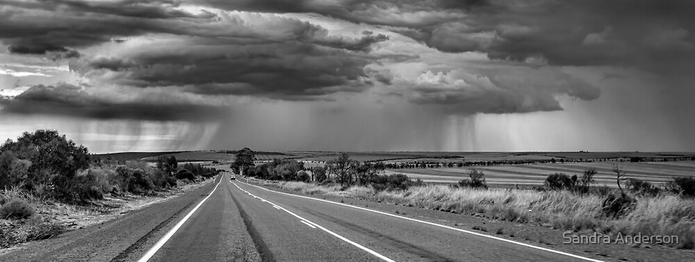 Into The Storm by Sandra Anderson