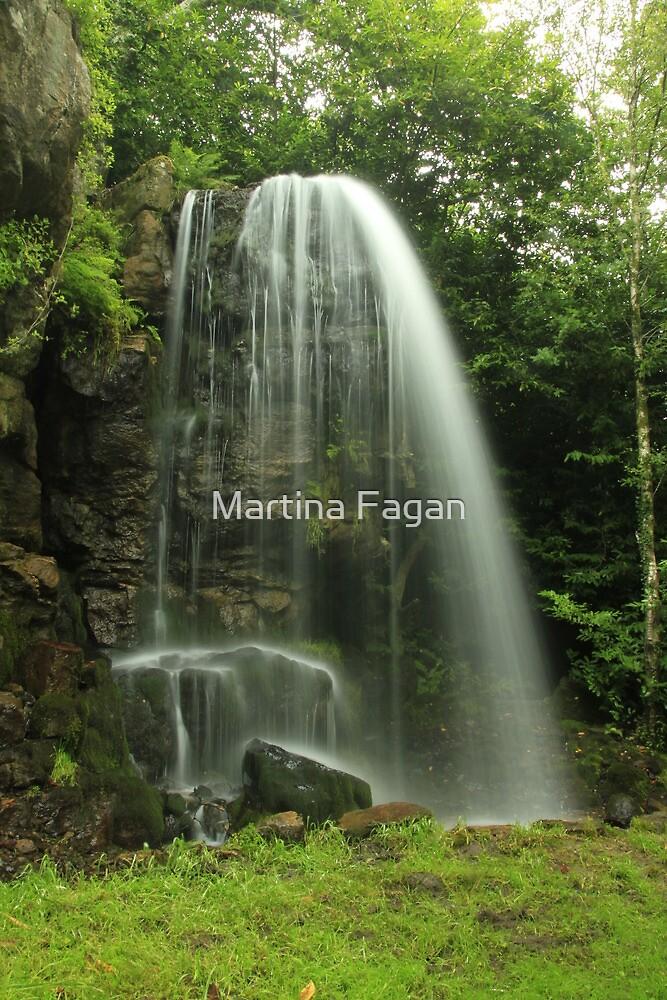 Kilfane Waterfall by Martina Fagan