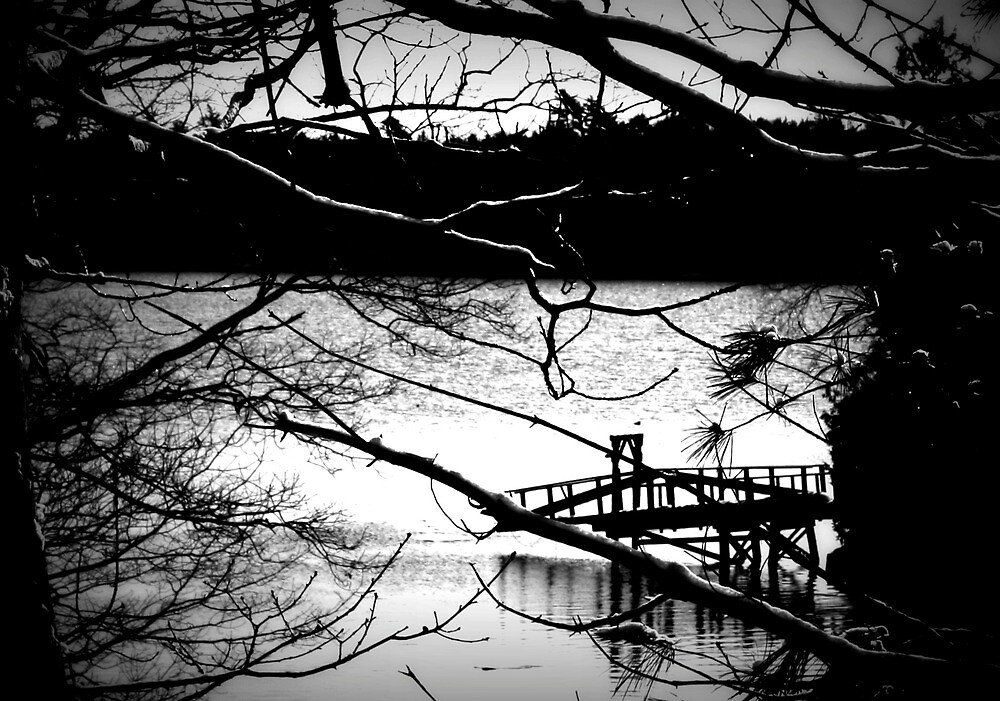 Snowy Morning and Dock Black and White by moosewinks