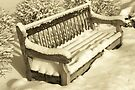 A Bench by John Schneider