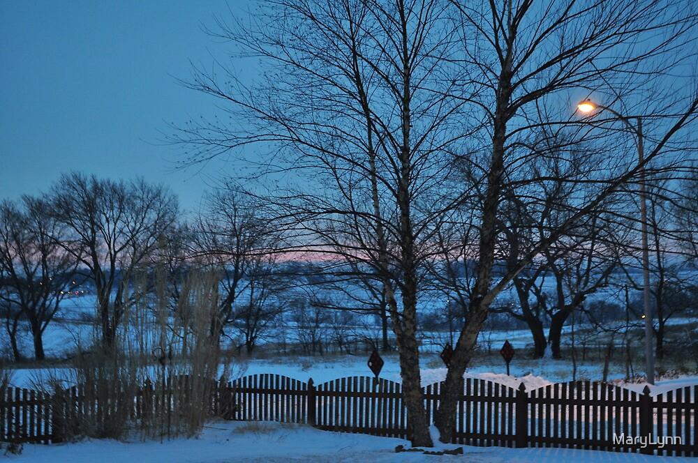 Blue Morning by MaryLynn