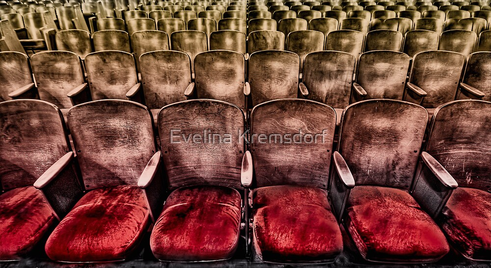 Face Your Audience by Evelina Kremsdorf
