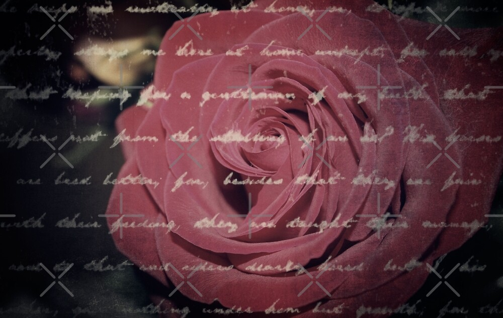 Antique Red Rose with Text by charmarose