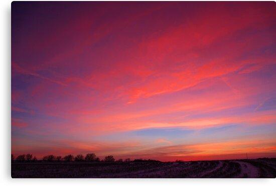 snowy sunset by Karen  Rubeiz