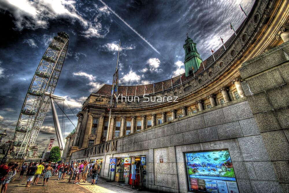 Sea Life London Aquarium & London Eye by Yhun Suarez