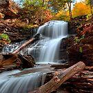 Shawnee Falls Under Fall's Colors by Gene Walls