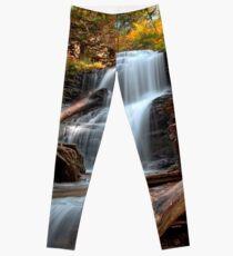 Shawnee Falls Under Fall's Colors Leggings