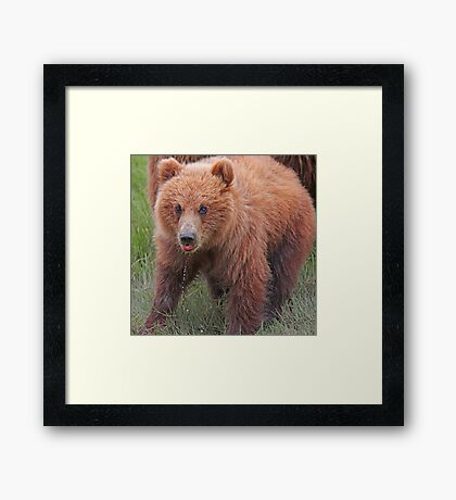 That was good!! Framed Print