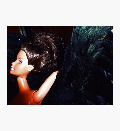 01-22-11  Black Swan Photographic Print