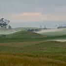 Misty morning - Northland NZ by Jenny Dean