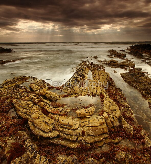 curves of the cape... by David Murphy