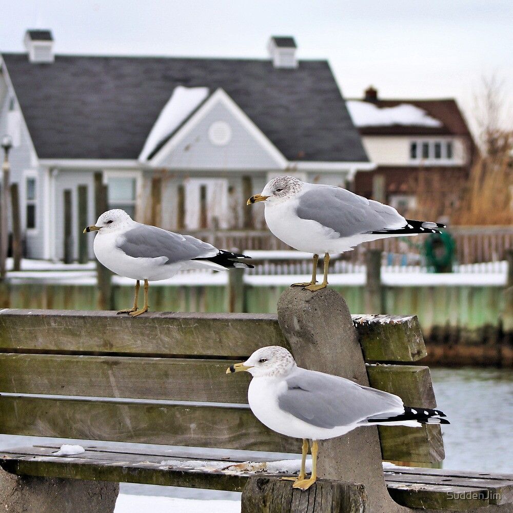 3 In A Row by SuddenJim