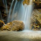 Pine Falls by brian watkins