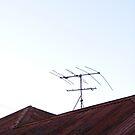 Queenslander Roof by minikin