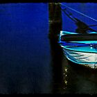 Moored at Geelong Eastern Beach  by Deb Gibbons