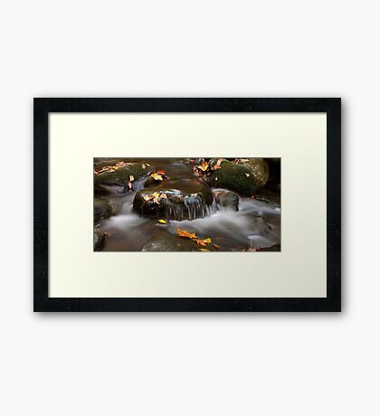 Whispers Framed Print