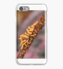 Wire Coral Shrimp iPhone Case/Skin