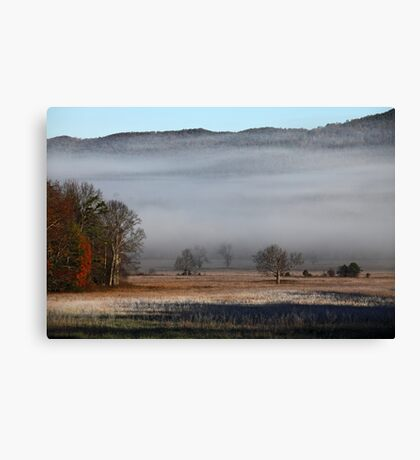 On A Crystal Morning Canvas Print