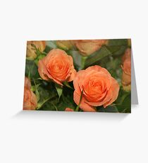 Out of a dozen - card Greeting Card
