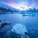 Tasman Lake New Zealand | The Ice Rose by Adrian Alford Photography