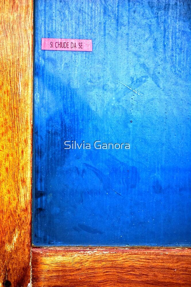 Self-closing door by Silvia Ganora