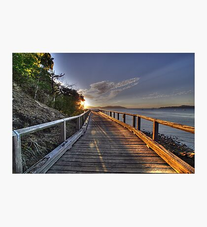 Paradise Walk Photographic Print