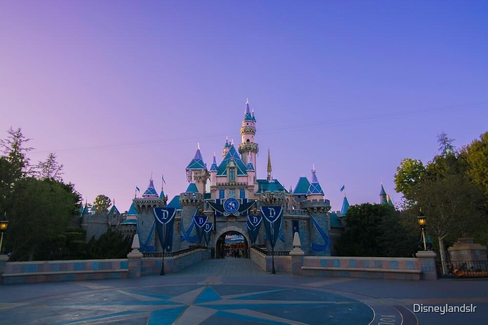 Lilac Beauty by Disneylandslr