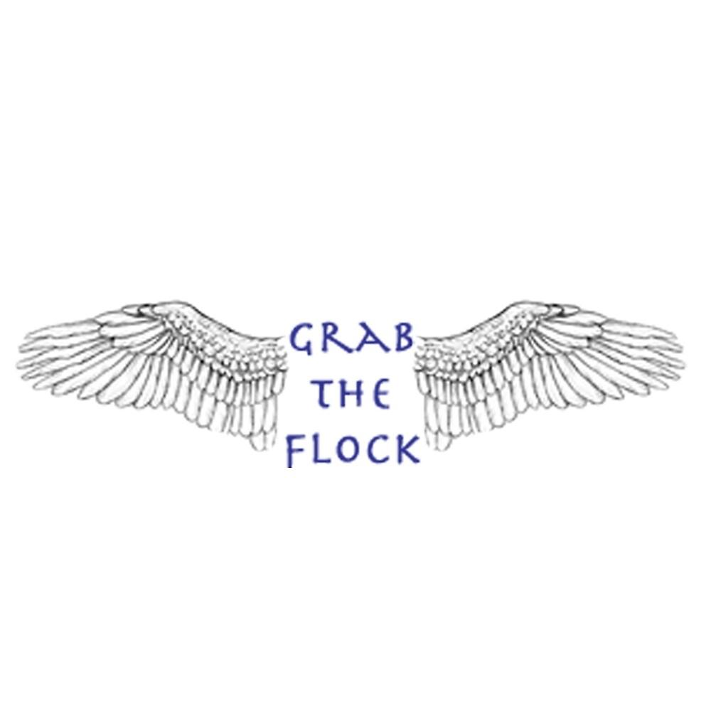 Grab The Flock- Maximum Ride by Katt-Stephh