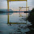 Harland & Wolff by Chris Cardwell