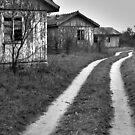 Road by Stefan Kutsarov
