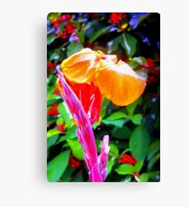 Flower spike and bloom Canvas Print
