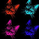 Tabby Cat Pop Art Orange, Turquoise, Pink, Purple by WiseKitty
