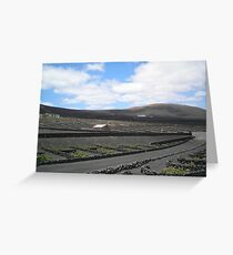 Vineyards in Lanzarote Greeting Card