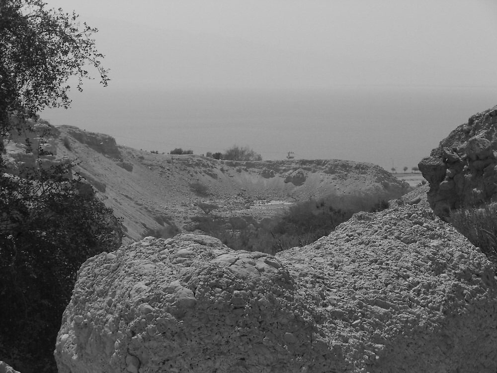 Rock with Dead Sea in Background by Adam Isaacson